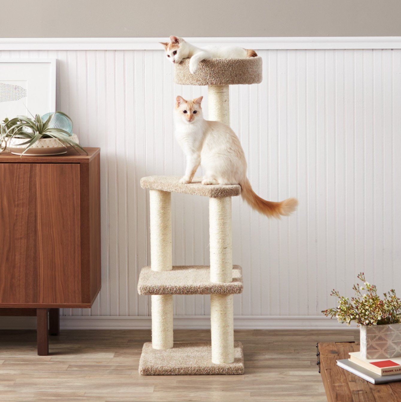The AmazonBasics Cat Tree With Scratching Posts Stands At About 4 Feet, Has  3 Platforms, Which Includes A Neat Bowl Bed At The Top For Your Cat To Take  ...
